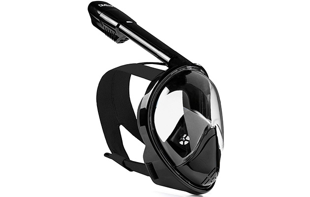 DIVELUX Snorkel Mask - Original Full-Face Snorkeling and Diving Mask with 180° Panoramic Viewing
