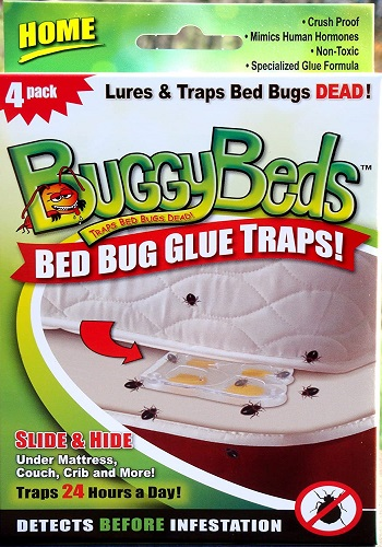 BuggyBeds Home Glue Traps- Detect Before Infestation