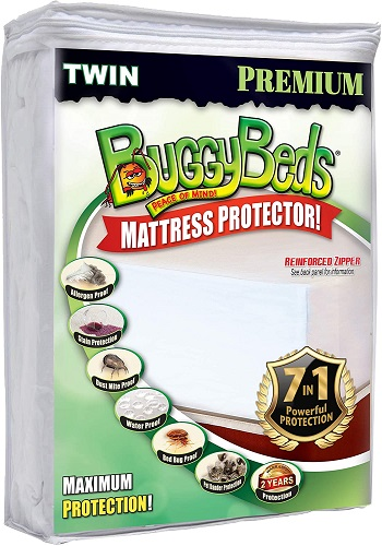 BuggyBeds Premium Mattress Encasement