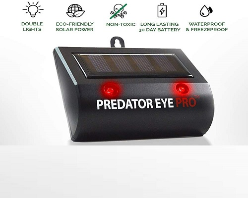 Solar Powered Animal Outdoor Repeller