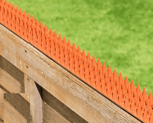 TheOutDoorShop Cat Repeller Fence and Wall Spikes